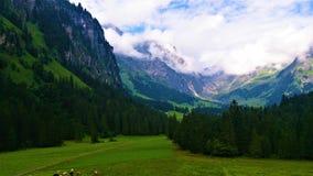Piede della parte alpina due delle montagne Fotografia Stock Libera da Diritti