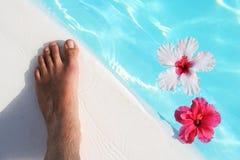 Piede e fiori Fotografie Stock