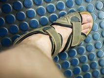 Piede maschio nel sandale Immagini Stock