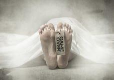 Piede morto su hobitory fotografie stock libere da diritti