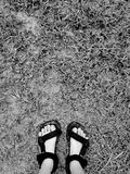 Piede nel fango Fotografia Stock