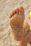 Piede nella sabbia Fotografia Stock