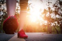 Piedi del corridore delle donne sulla strada nel benessere di allenamento Immagini Stock Libere da Diritti