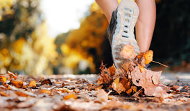 Piedi del corridore di autunno Fotografia Stock Libera da Diritti