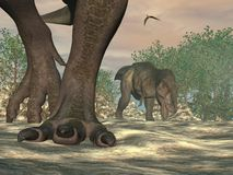 Piedi del dinosauro del rex di tirannosauro - 3D rendono Fotografia Stock