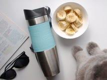 Piedi del ` s del gatto accanto ad una tazza delle banane, occhiali da sole, una rivista - in mezzo ad una termo tazza immagini stock libere da diritti