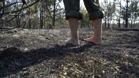 Piedi dell'uomo che camminano dalla foresta bruciata, tempo di siccit? del dangeroud, cenere, catactrophe di disastro di ecologia video d archivio