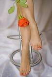 Piedi della donna e di una rosa Fotografia Stock