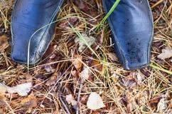 Piedi della persona in stivali che stanno sulla terra nella foresta di autunno Immagine Stock