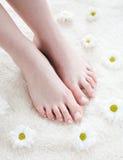 Piedi femminili con le margherite bianche. Fotografia Stock