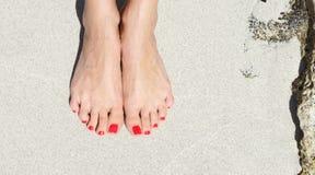 Piedi graziosi della donna con il pedicure rosso fotografia stock