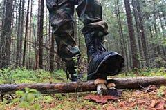 Piedi nella foresta di autunno delle scarpe Immagine Stock Libera da Diritti