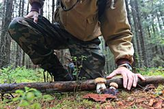 Piedi nella foresta di autunno delle scarpe Fotografia Stock Libera da Diritti
