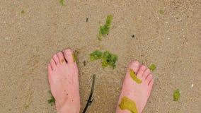 Piedi nudi su un'erbaccia del mare della spiaggia nell'acqua stock footage