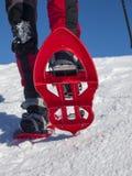 Piedi in racchette da neve Fotografie Stock