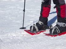 Piedi in racchette da neve Fotografia Stock