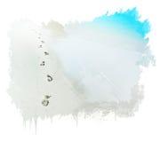 Piedi scalzi della traccia nella sabbia Fotografia Stock