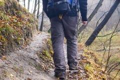 Piedi in scarpe su un sentiero nel bosco Fotografia Stock