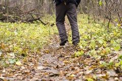 Piedi in scarpe su un sentiero nel bosco Fotografie Stock