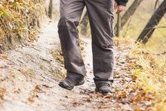 Piedi in scarpe su un sentiero nel bosco Fotografia Stock Libera da Diritti