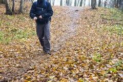 Piedi in scarpe su un sentiero nel bosco Immagini Stock Libere da Diritti