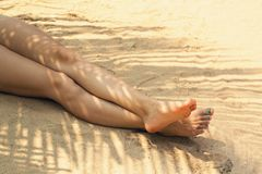 Piedi sotto la palma Fotografia Stock
