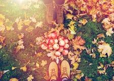 Piedi in stivali con le mele e le foglie di autunno Fotografie Stock Libere da Diritti