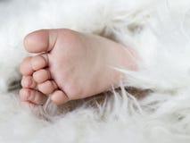 Piedini del bambino Immagini Stock