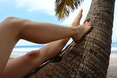 Piedini della donna su una noce di cocco Immagine Stock
