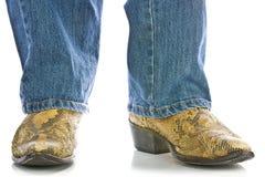Piedini nei caricamenti del sistema dei cowboy dello snakeskin e dei jeans Fotografie Stock