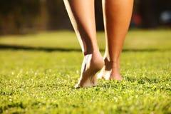 Piedini sull'erba Fotografia Stock Libera da Diritti