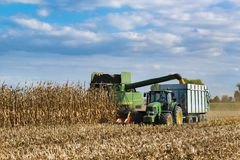 Combine harvester corn and discharge it into the trailer Royalty Free Stock Photography