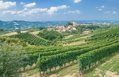 Piedmont near Asti,Italy. Vineyard landscape in Piedmont near Asti,Italy Royalty Free Stock Image