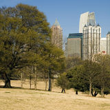 Piedmont Park Royalty Free Stock Photography