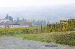 Piedmont vingårdar som producerar alta Langa Spumante, Italien Arkivbild