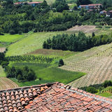 Piedmont wine province, Italy Royalty Free Stock Image