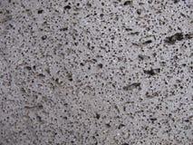 Piedra áspera del topetón del mar Fotos de archivo libres de regalías