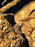 piedra Fotografía de archivo libre de regalías