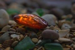 Piedra ambarina Ámbar mineral Ámbar amarillo de la resina Sunstone en una playa de guijarros fotografía de archivo libre de regalías