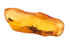 Piedra ambarina báltica fotografía de archivo libre de regalías
