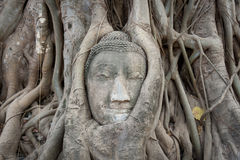 Piedra arenisca Buddha Fotos de archivo libres de regalías