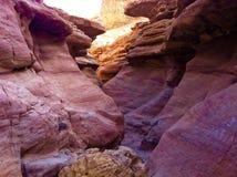 Piedra arenisca en el barranco rojo, Israel Foto de archivo libre de regalías