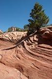 Piedra arenisca erosionada Fotos de archivo libres de regalías
