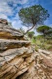Piedra arenisca extrañamente formada Fotografía de archivo