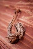 Piedra arenisca y madera Fotos de archivo