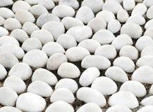 Piedra blanca del guijarro imagen de archivo