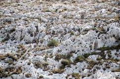 Piedra caliza coralina superior fotografía de archivo