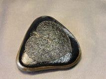 Piedra con el esqueleto de la hoja Imagen de archivo libre de regalías