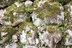 Piedra con el musgo Fotografía de archivo libre de regalías