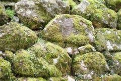 Piedra cubierta de musgo Imagenes de archivo